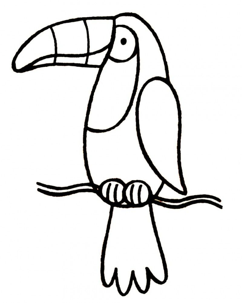 Toucan Sam Coloring Sheets | Coloring Pages | Pinterest