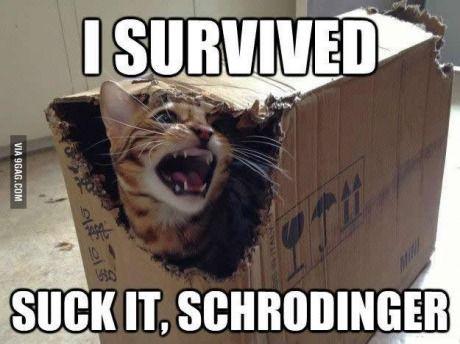 Suck it Schrodinger!