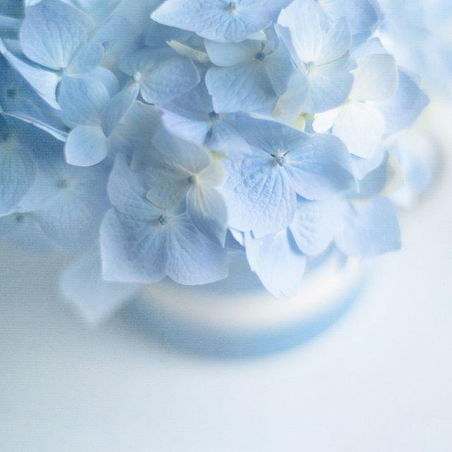 Beautiful Light Blue Bedrooms: Blue Aesthetic, Blue Aesthetic Pastel