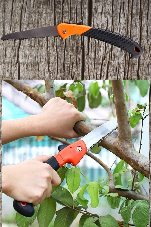 Pin On Pruning Saw