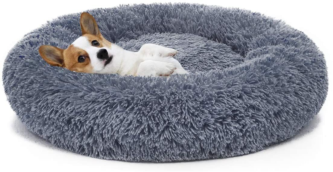 Best Dog Beds For Large Dogs Hellow Dog Orthopedic Dog Bed Cool Dog Beds Round Dog Bed