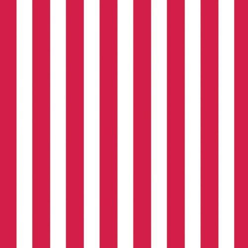 RED WHITE and GREEN STRIPE 12 x 12 Scrapbook Paper |Red And White Striped Cardstock