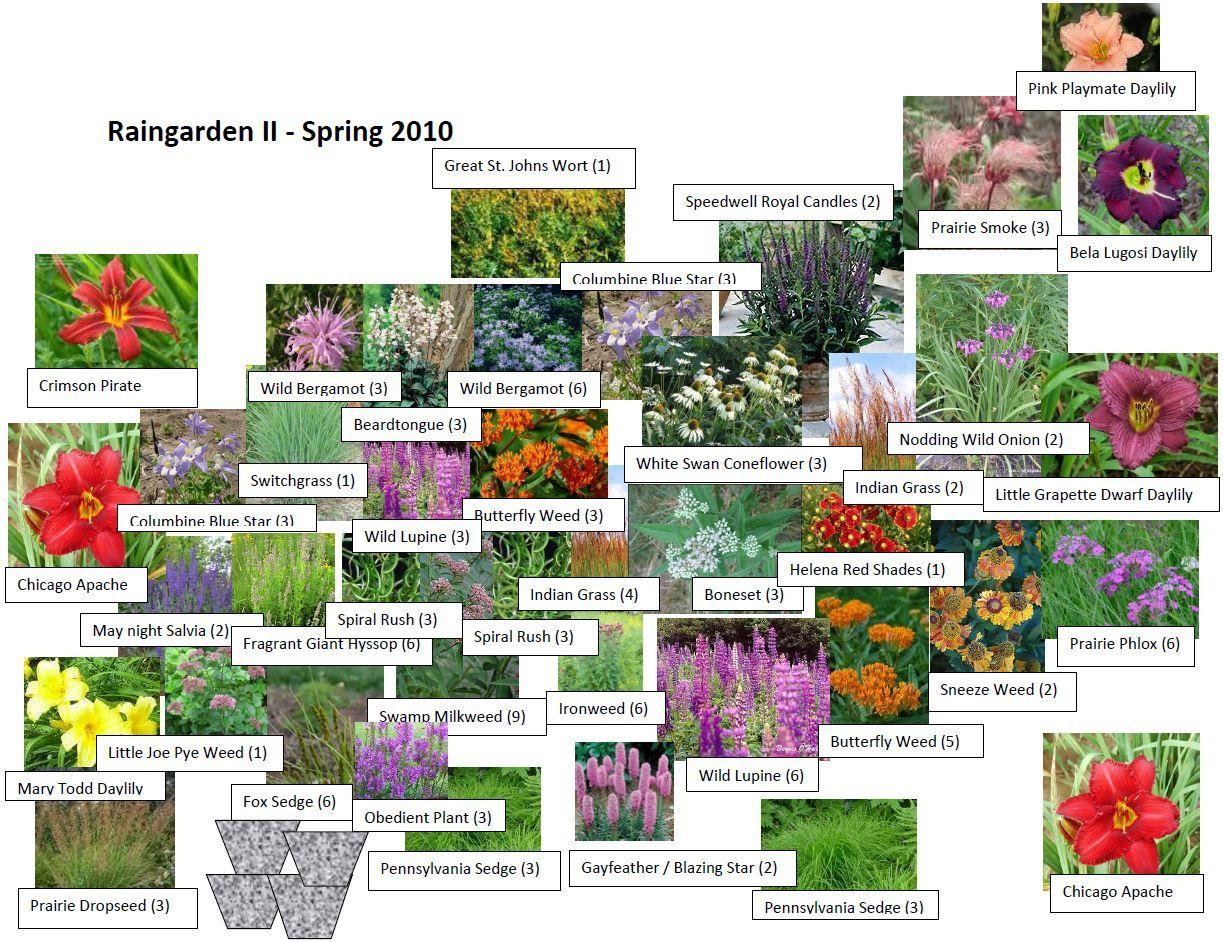 List Of Garden Plants U2013 Garden Ftempo