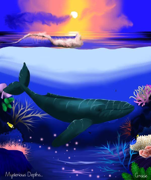 grace sapp art   Humpback Whale Computer Graphic Art Print Artworks Paintings Prints ...