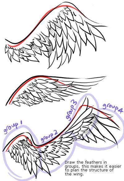 Drawing Tutorials Wings Anime Drawings Tutorials Wings Art Drawing Tips