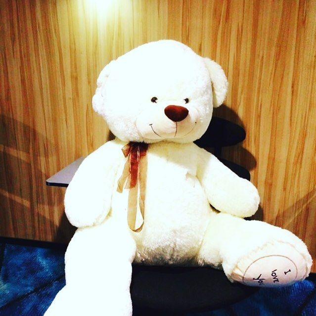 Herra karhu matkusti eilen mukavasti Loungessa 🛳🐻 #mukavaa #matkantekoa #tallinna #helsinki #kokouskeskus #lounge #msfinlandia #karhu #eckeröline #elämäälaineilla