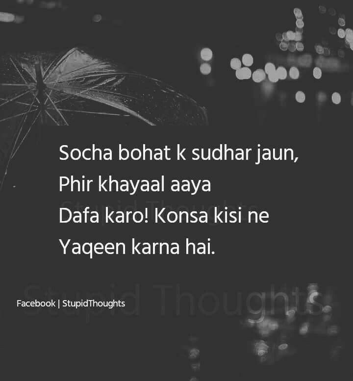 Pin by Shadab Khan on Shot Stupid quotes, Real quotes