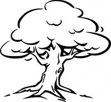 Trees outline. Tree clip art coloring