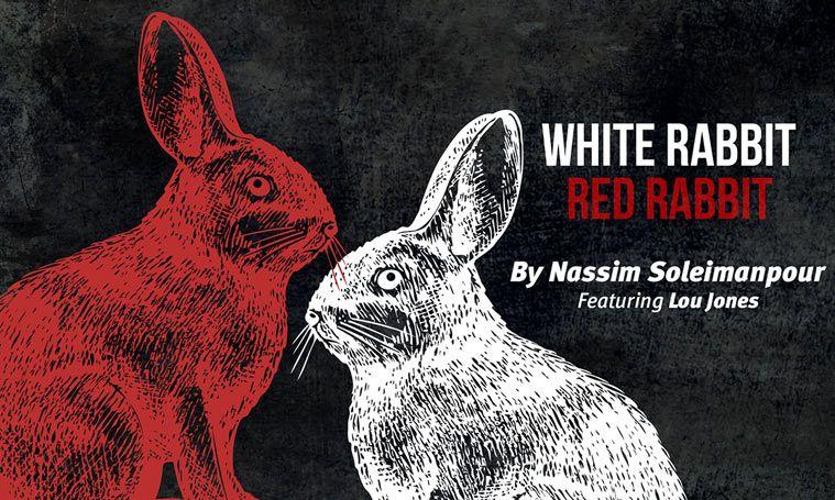White Rabbit Red Rabbit Un Spectacle Pas Comme Les Autres Au