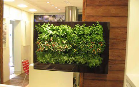 quadro vertical para plantas - Pesquisa Google