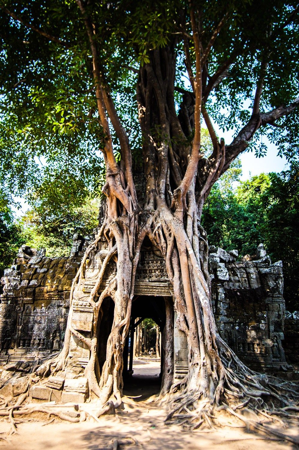A great guide to must-see temples at Angkor in Cambodia!
