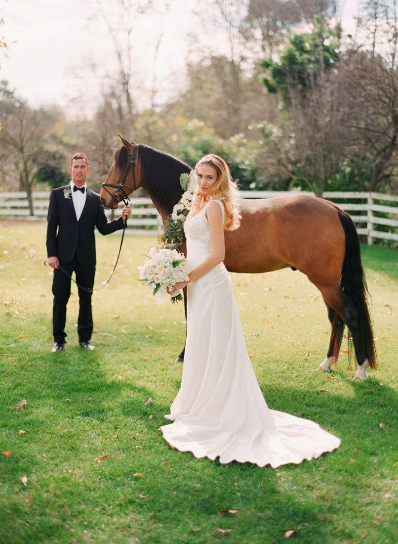 Hochzeitsfotos Mit Pferden Die Schonsten Pferdebilder Aller Zeiten Hochzeit Zenideen Horse Wedding Photos Horse Wedding Wedding Photography Poses