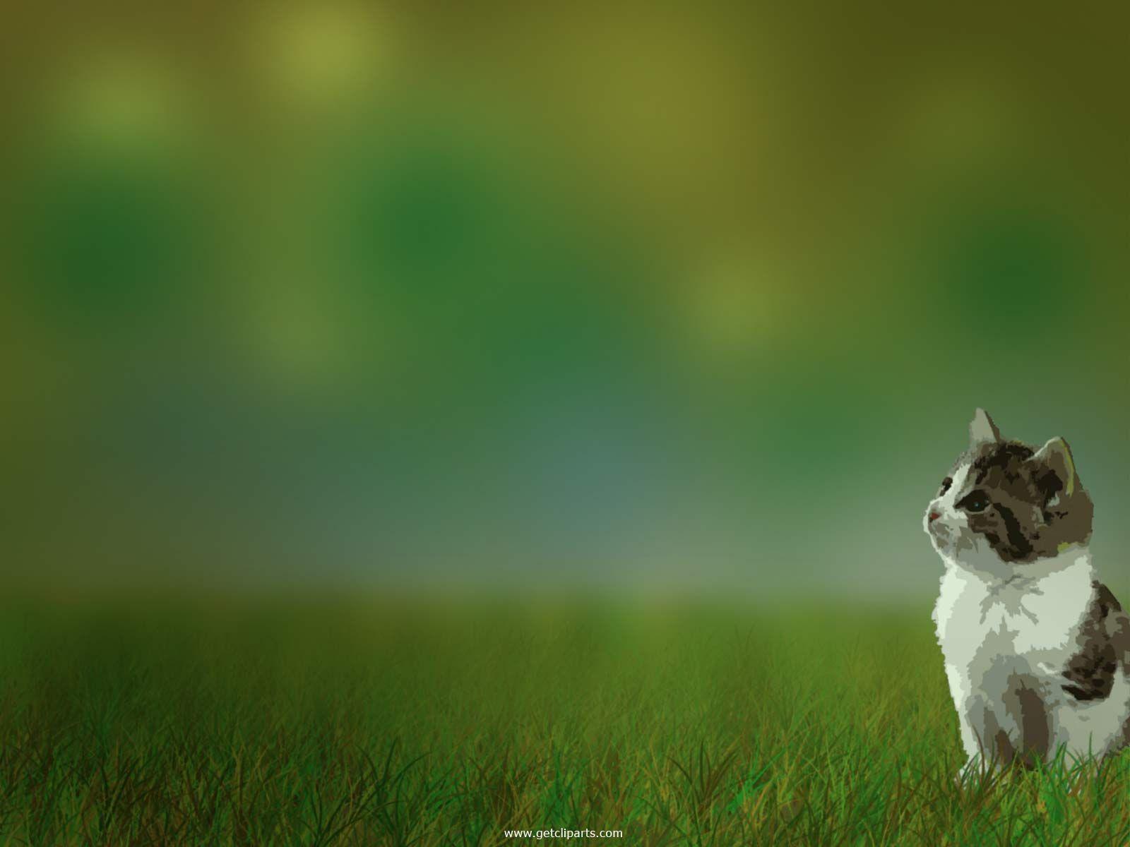 Cute Cat Wallpaper Google Search Catz Cute Animals Cute Cute