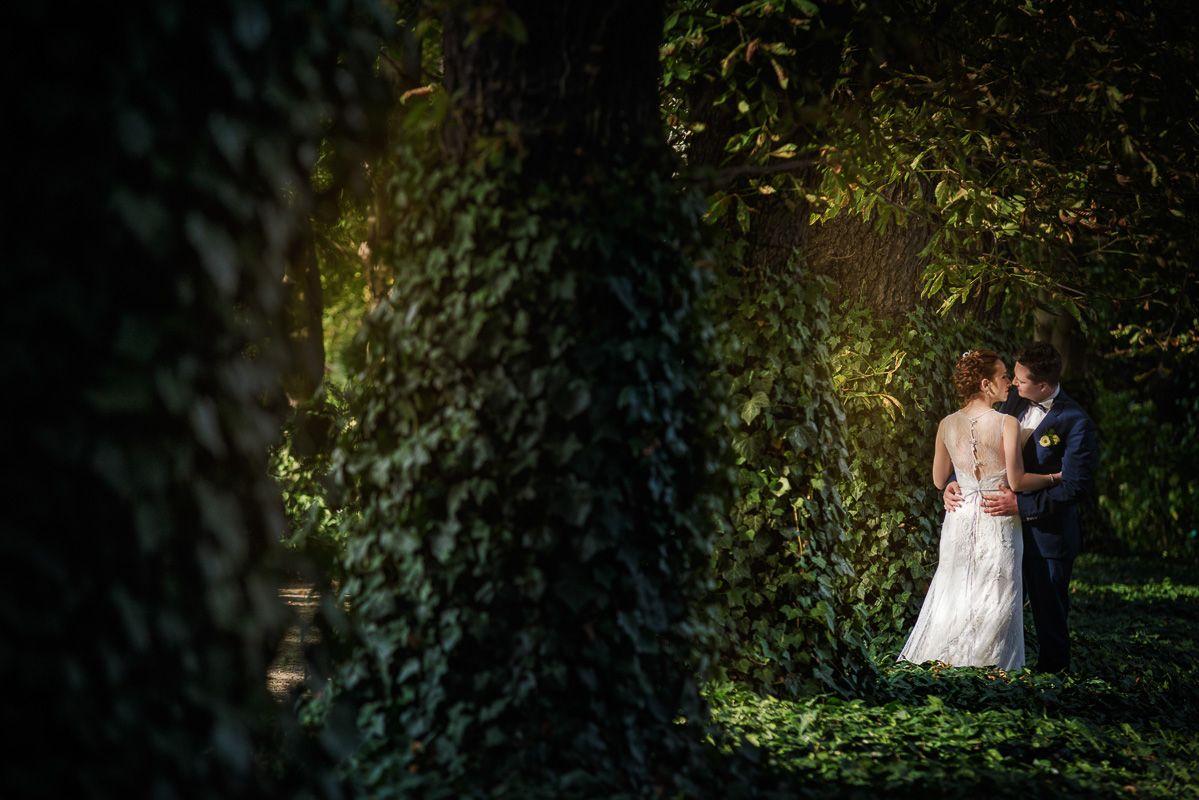 490+WEDDING PHOTOGRAPHER   Wedding Photographer Mariusz Majewski