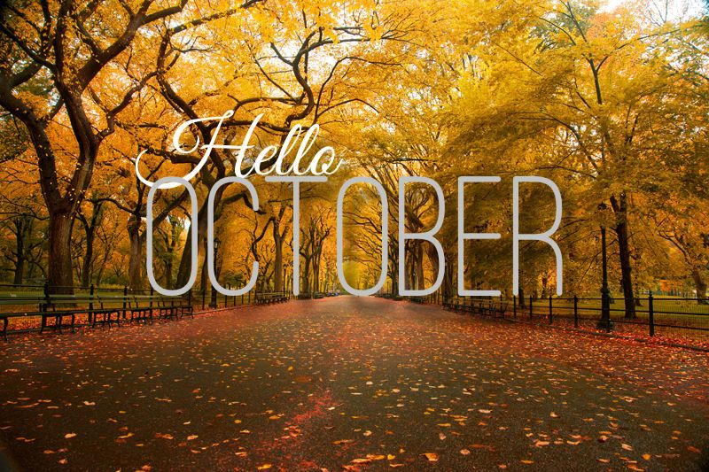 month of october | The Posh Coincidence