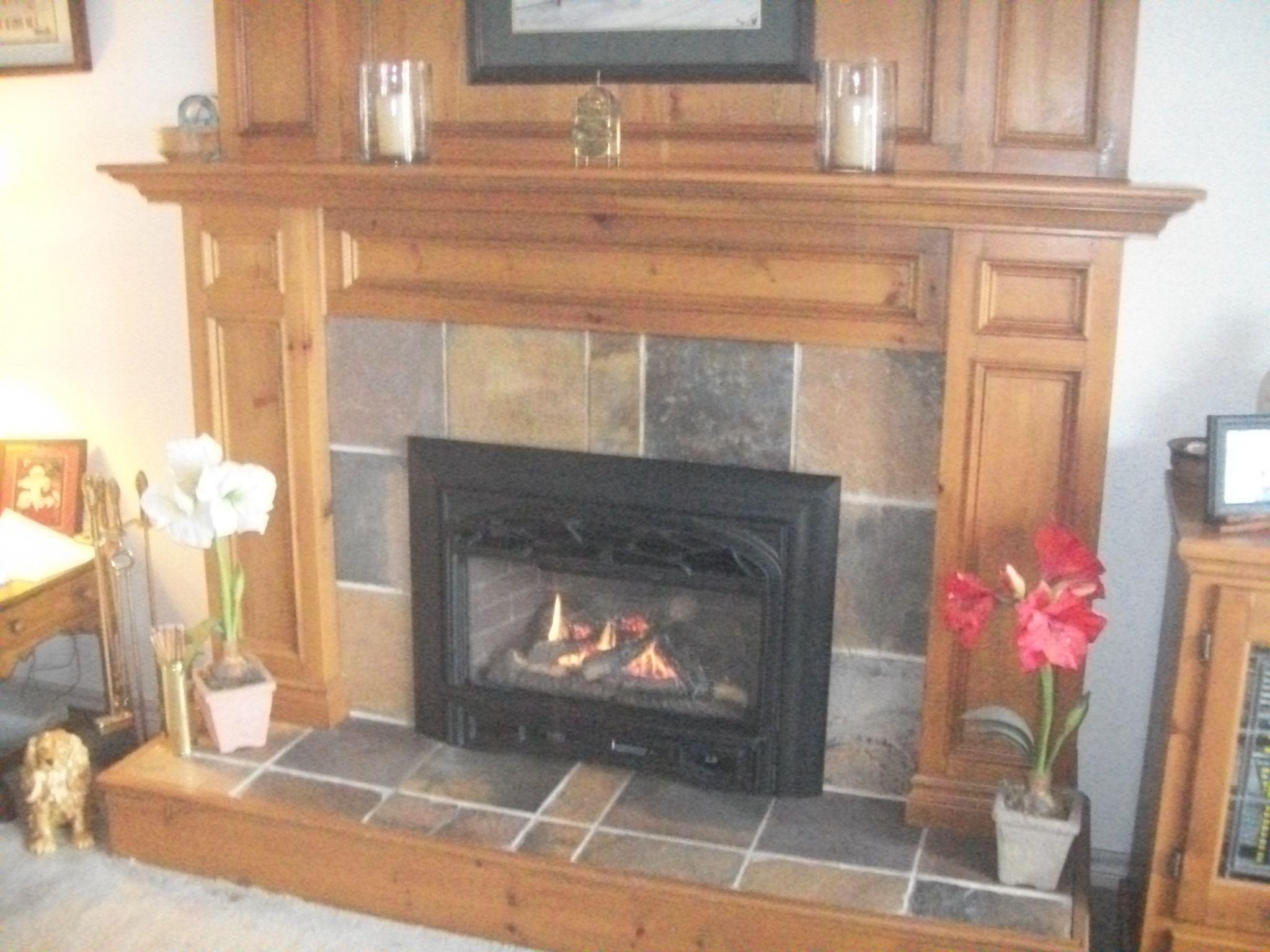 Valor Legend 739iln Gas Insert With Logs Fireplace Design Fireplace Design