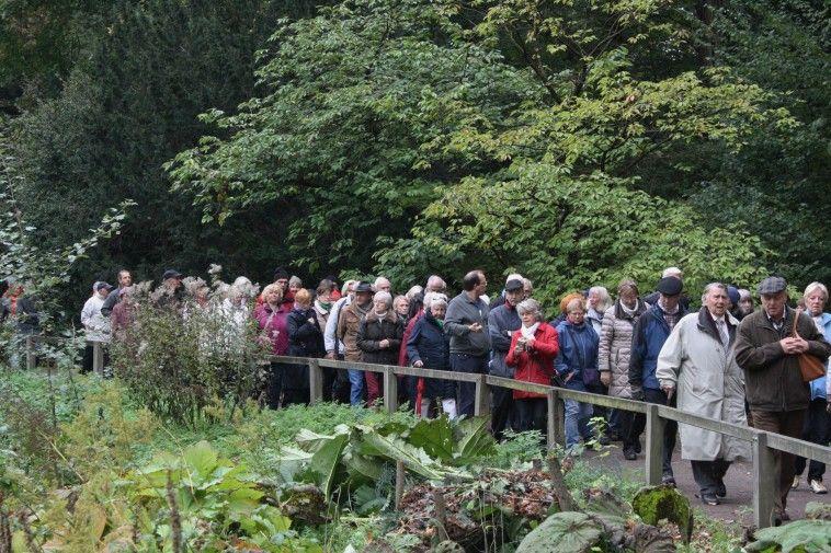 Fuhrungen Seminare Botanischer Garten Rombergpark Freizeit Kultur Tourismus Stadtportal Dortmund De Botanischer Garten Tourismus Rom