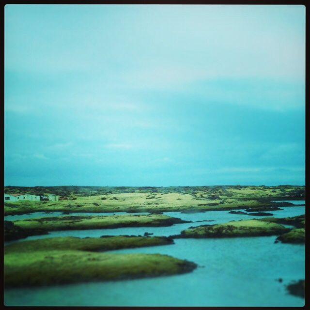 Den Islandske natur