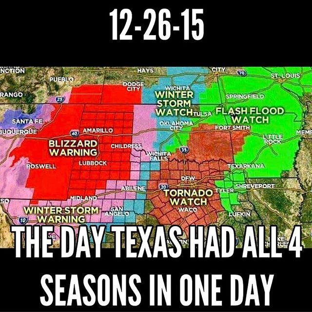 Hootsuite (With images) Texas humor, Texas weather, Only