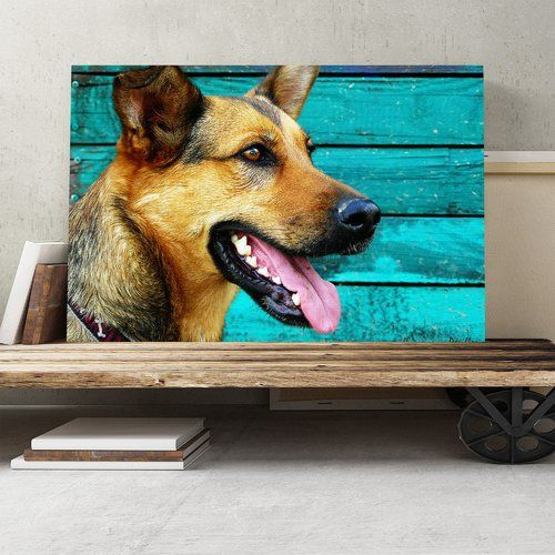 German Shepherd Alsatian Dog Photographic Print On Canvas Big Box Art Size 40cm H X 60cm W Big Box Art Canvas Art Alsatian Dog