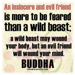 Buddha Quotes On Friendship. An Insincere And Evil Friend Is More To Be  Feared Than