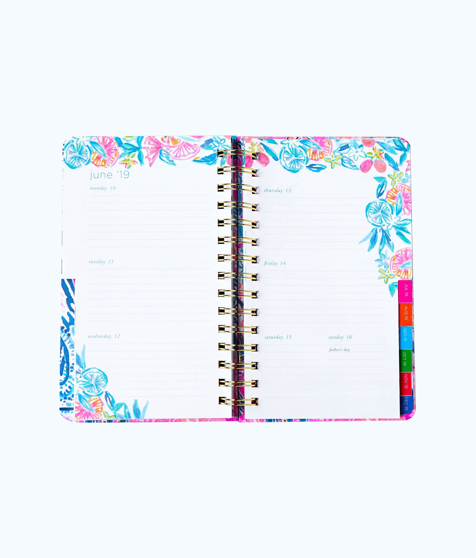 9b030adc82f8b4 Lilly Pulitzer 2018-2019 17 Month Medium Agenda - Nauti Navy Flamingo  Planner 1 Sz Gold