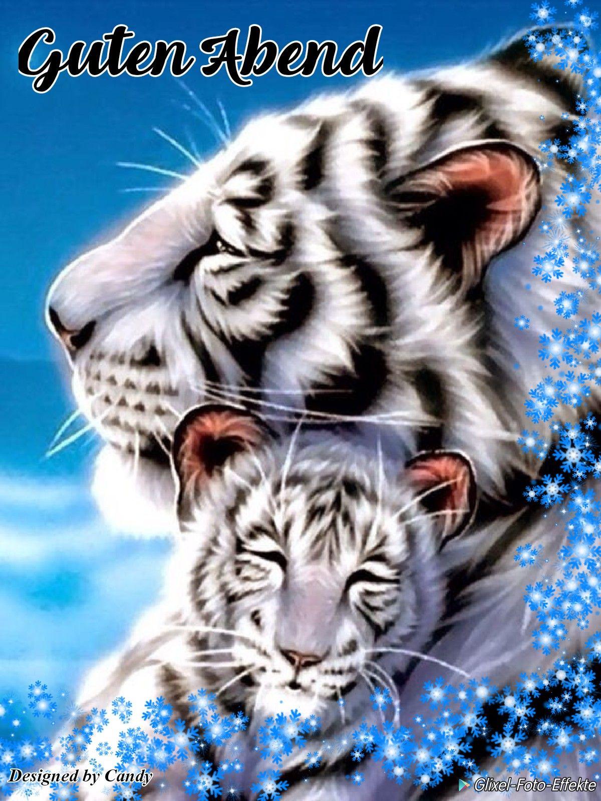 Pin Von Puspo Wungu Auf White Tiger Gute Nacht Ich Liebe