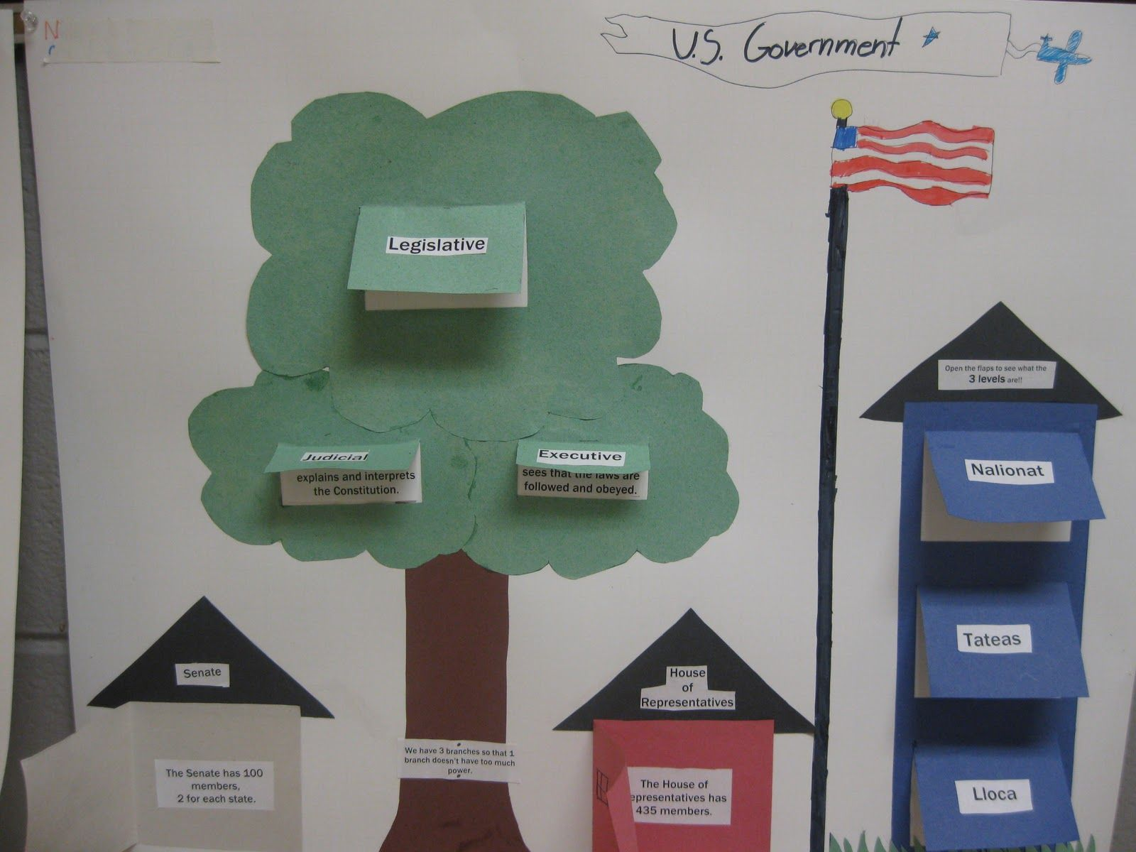 American Government Social studies, Election process and