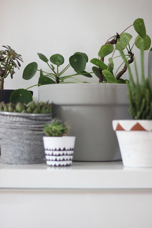 DIY painted plant pot ideas | Growing Spaces