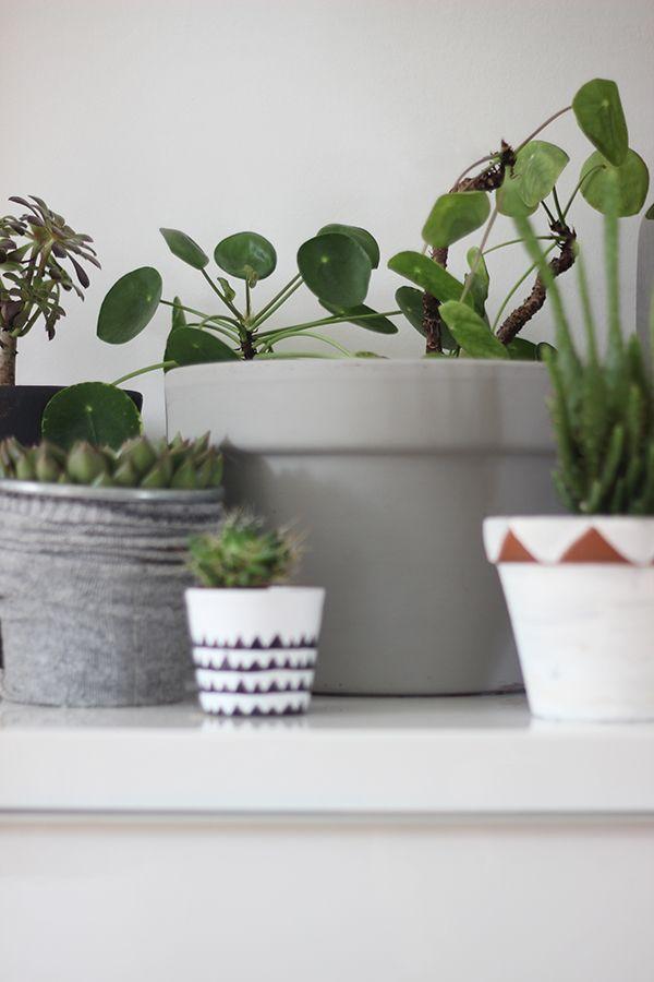 DIY painted plant pot ideas | Growing Spaces