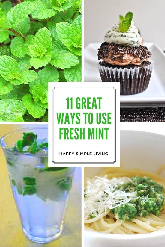 Use the fresh mint in the garden for refreshing drinks, recipes and more | Happy Simple Living blog