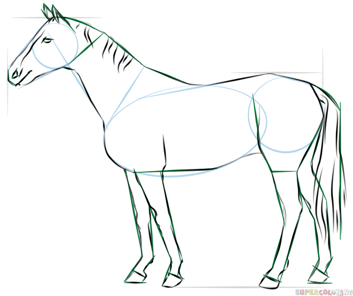How to draw a realistic horse standing step by step drawing tutorials for kids and