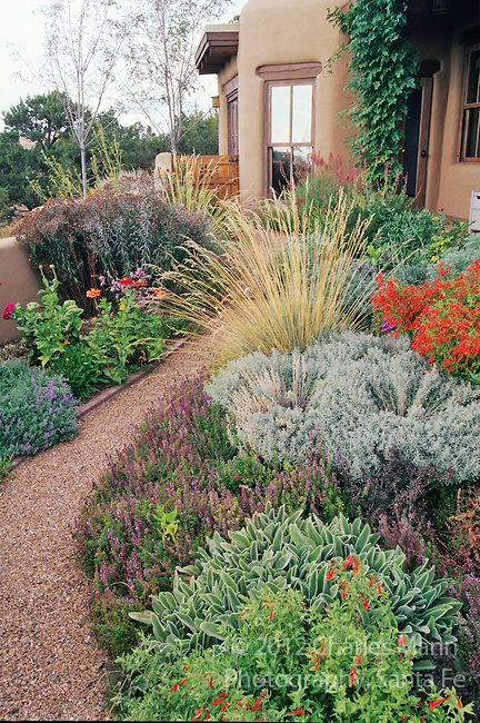Xeriscape Garden By Susan Blake Of Santa Fe Features Many Beautiful Drought Tolerant Species Including Zauschneria Stachys Centranthus Lavender
