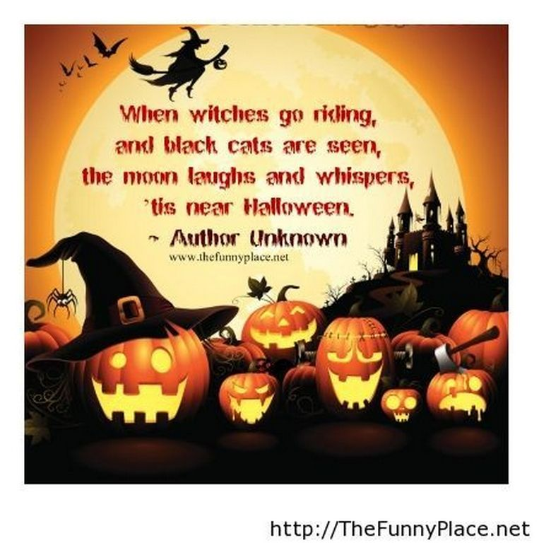 Halloween Funny Quote With Wallpaper   Funny Pictures, Awesome Pictures,  Funny Images And Pics