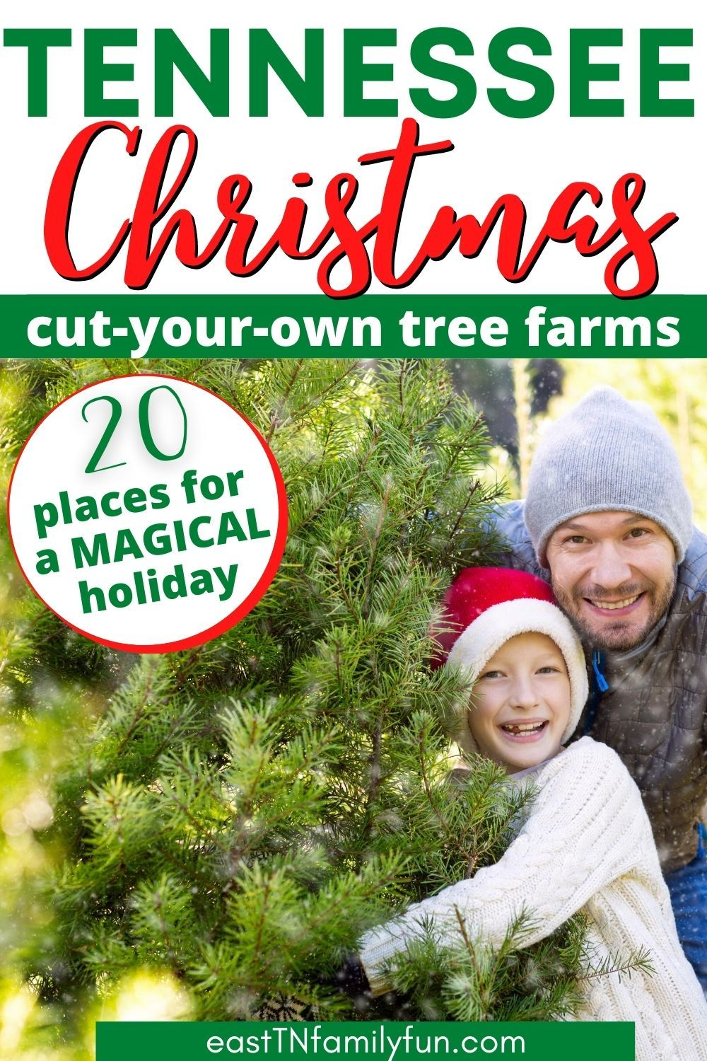 East Tennessee Christmas Tree Farms In 2020 Tennessee Christmas Tree Farms Tennessee Vacation