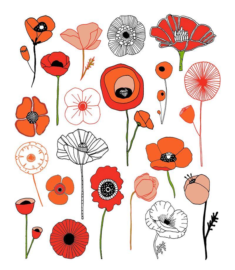 Poppies pinterest art illustrations lisa and illustrations poppy flowers how to poppylowres mightylinksfo