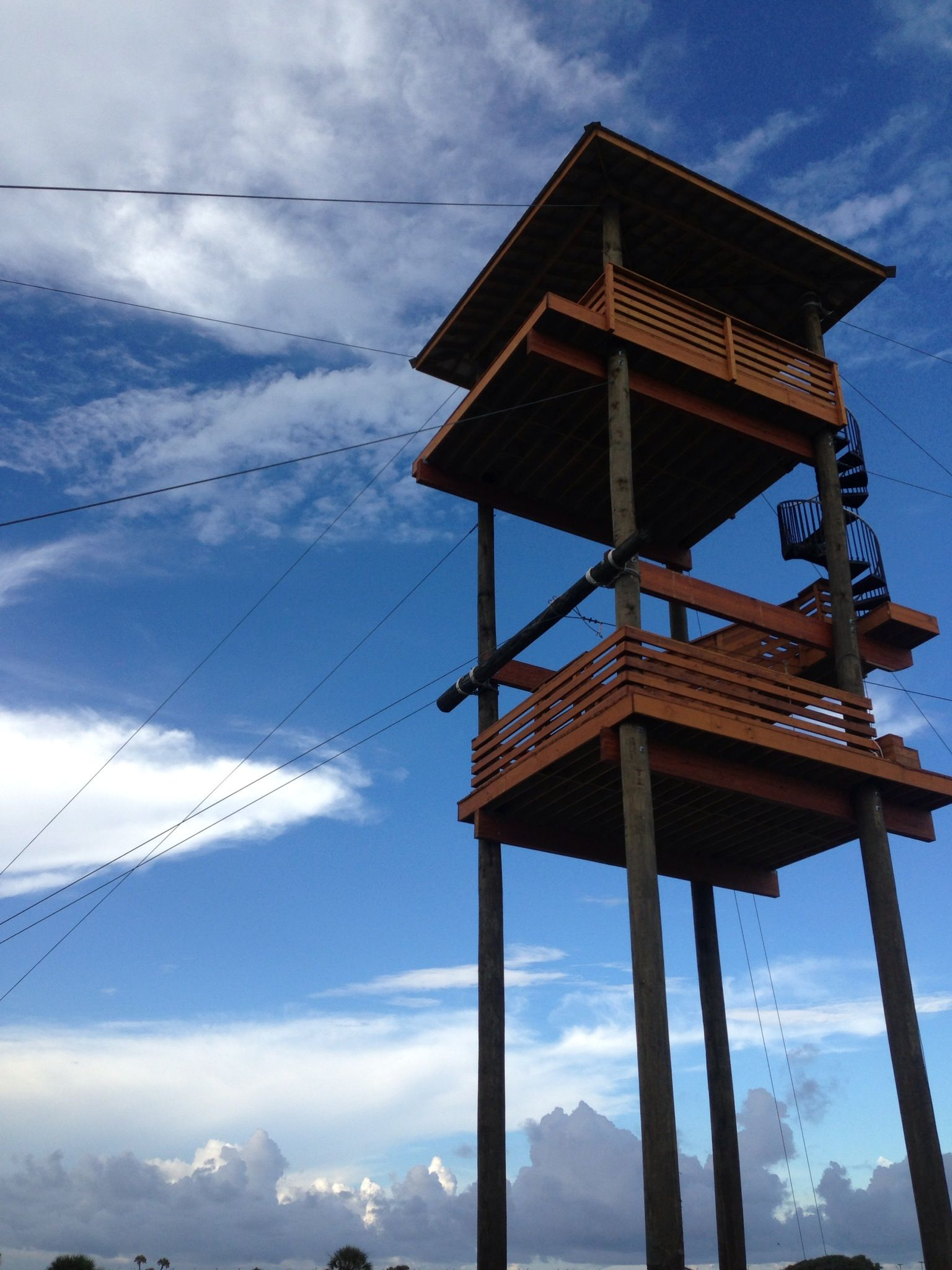 The Majestic Hummingbird Towers Stretches Up To Greet The Early