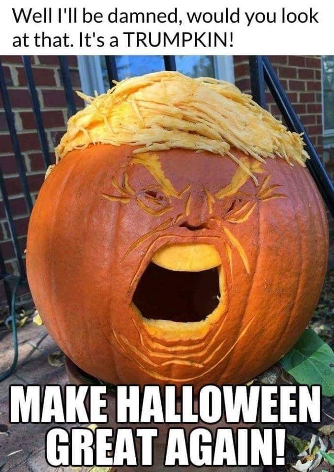 Pin by Carolyn Tripp on Trump Comedy Halloween memes