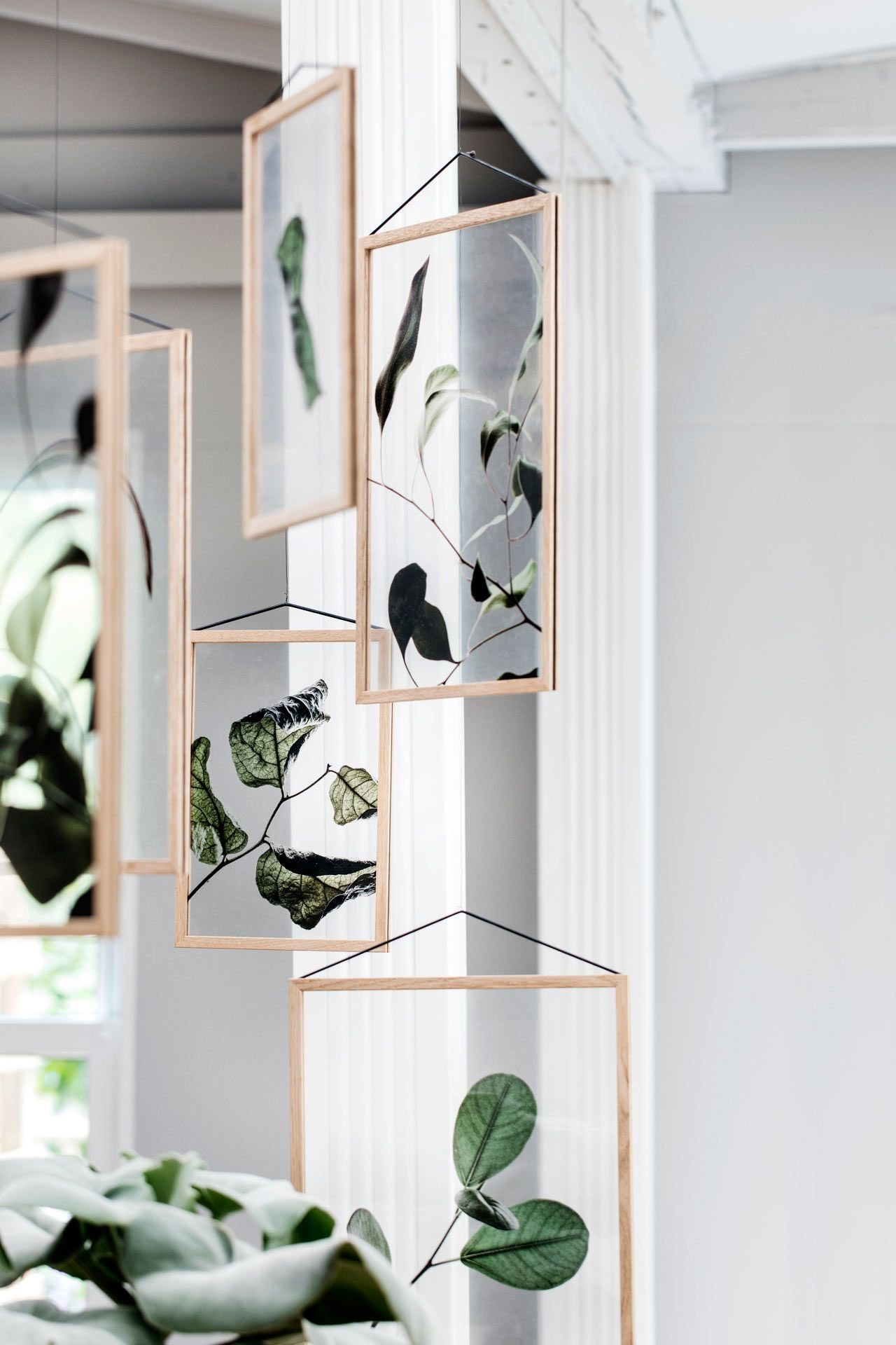 Three Danish Companies Release Transparent Botanical Prints | Art ...