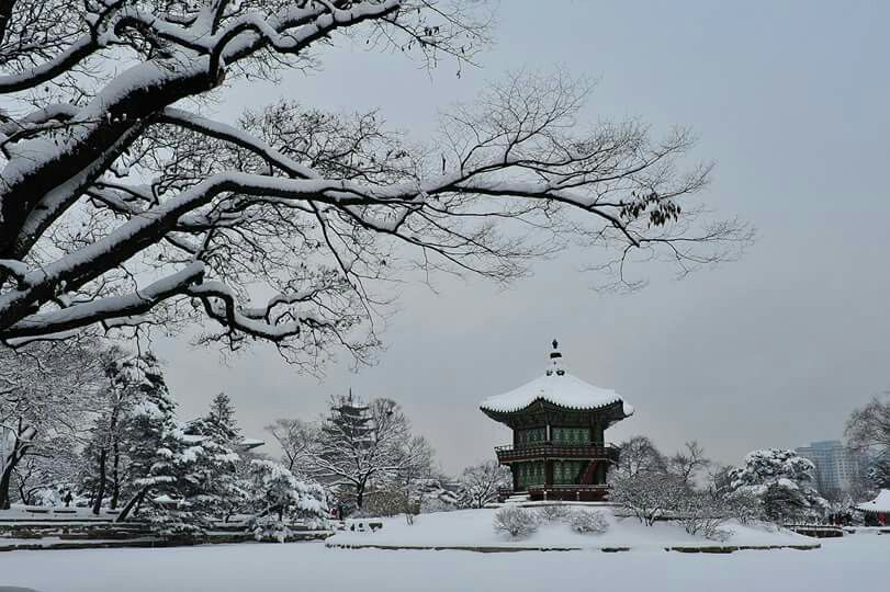 Snowscapes of Hyangwonjeong in Gyeongbok-Palace  경복궁 향원정 설경