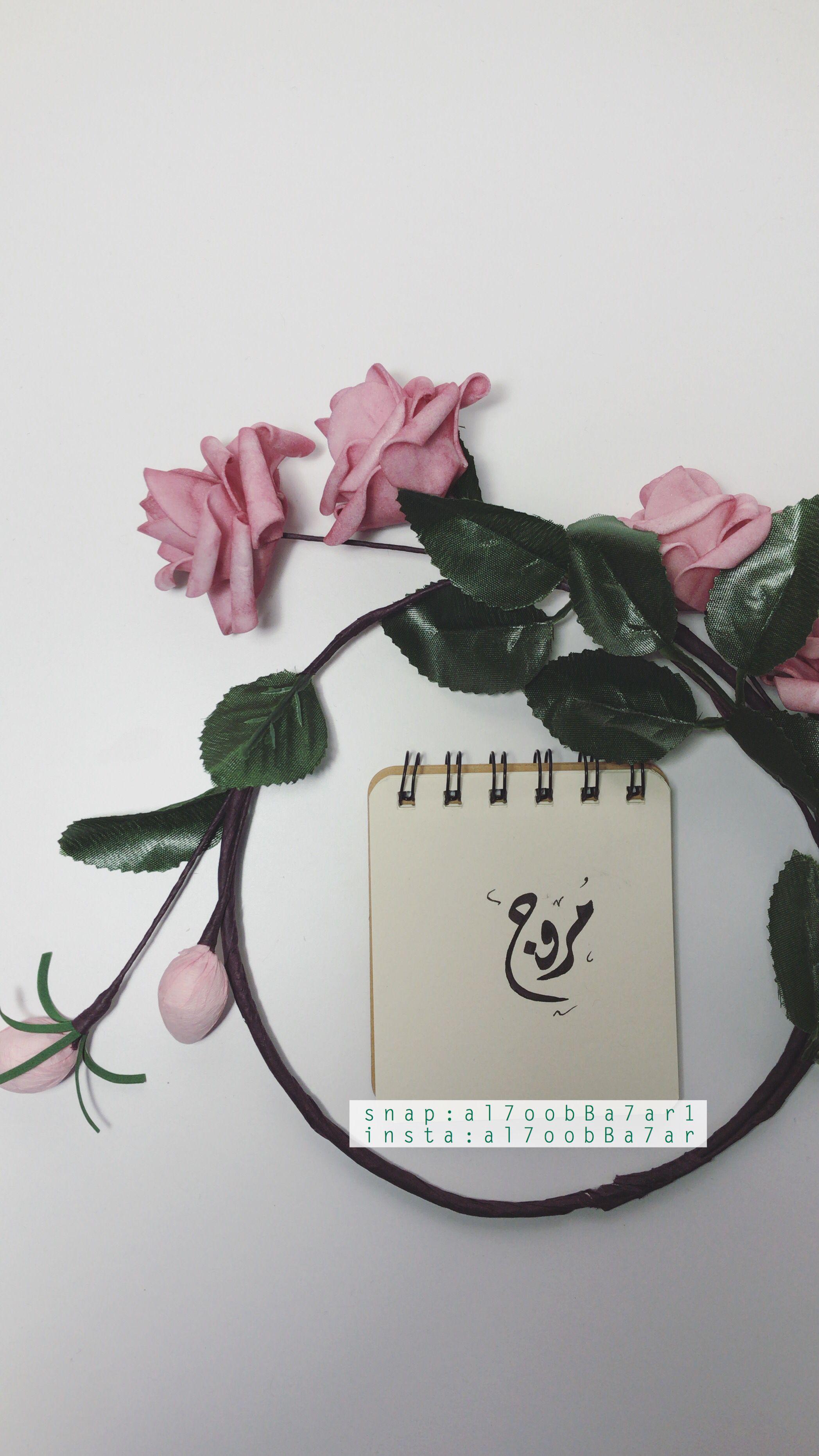 Pin By Sdgr On افكار Iphone Wallpaper Wallpaper Hoop Wreath