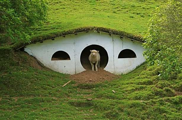 underground earth homes pictures   Let There Be Light!