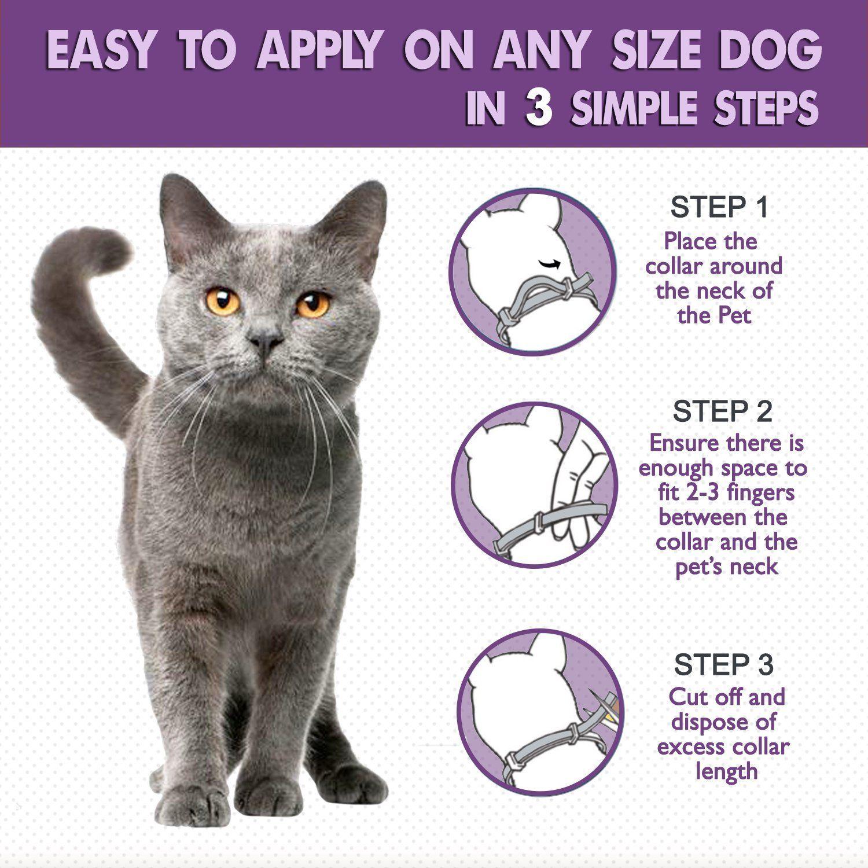 New Natural Cat Flea and Tick Collar. Adjustable