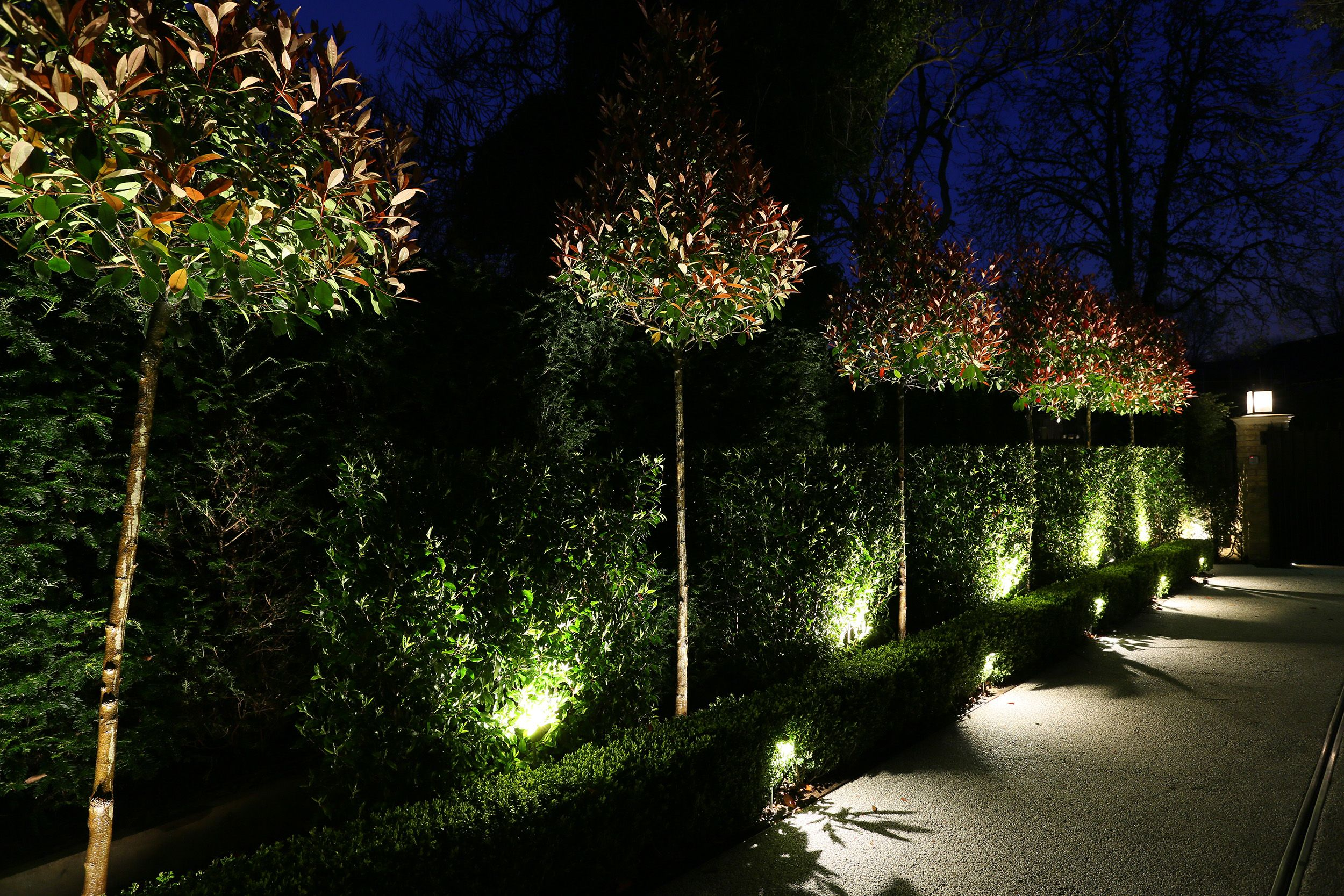 Garden lighting by John Cullen (With images) Outdoor