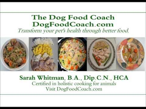 The Only Nutritionally Balanced Homemade Dog Food Featuring 5