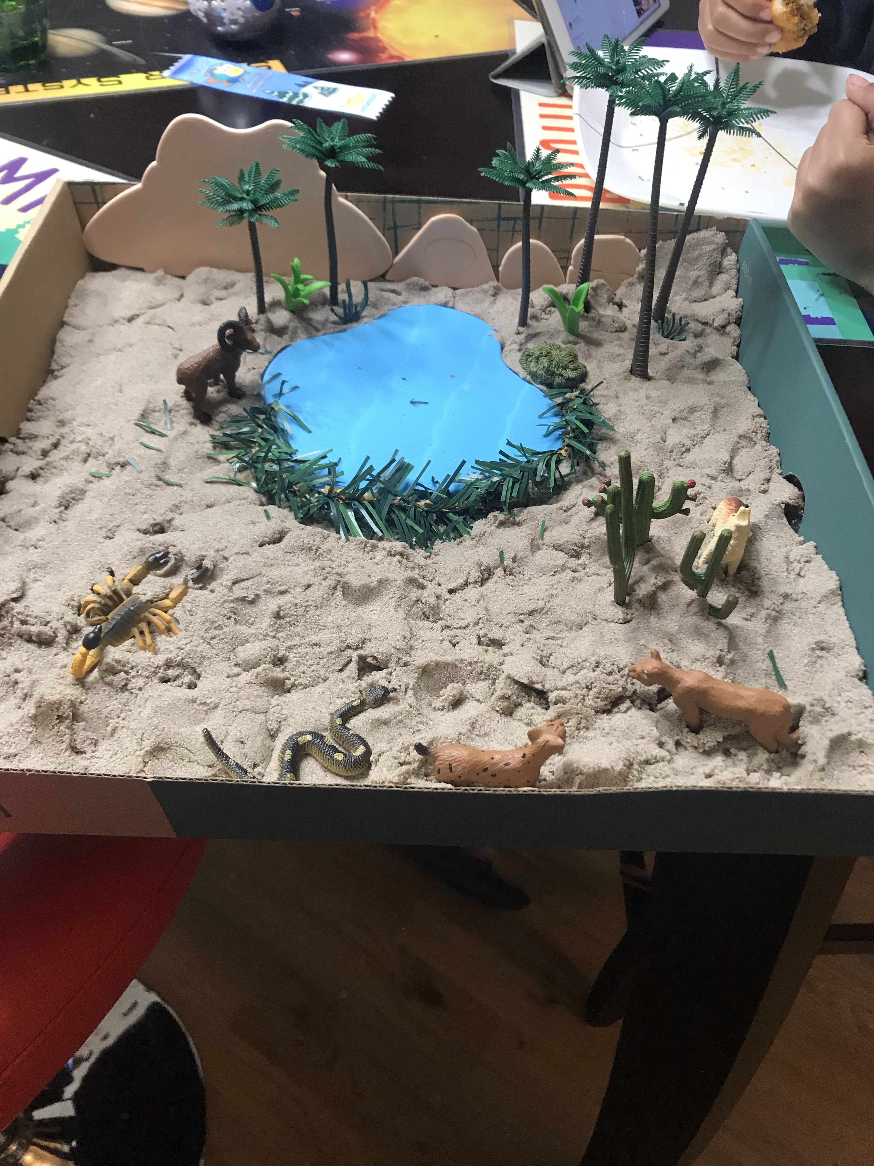Kids Diorama With Details: Made This Oasis/ Desert Diorama For School Project