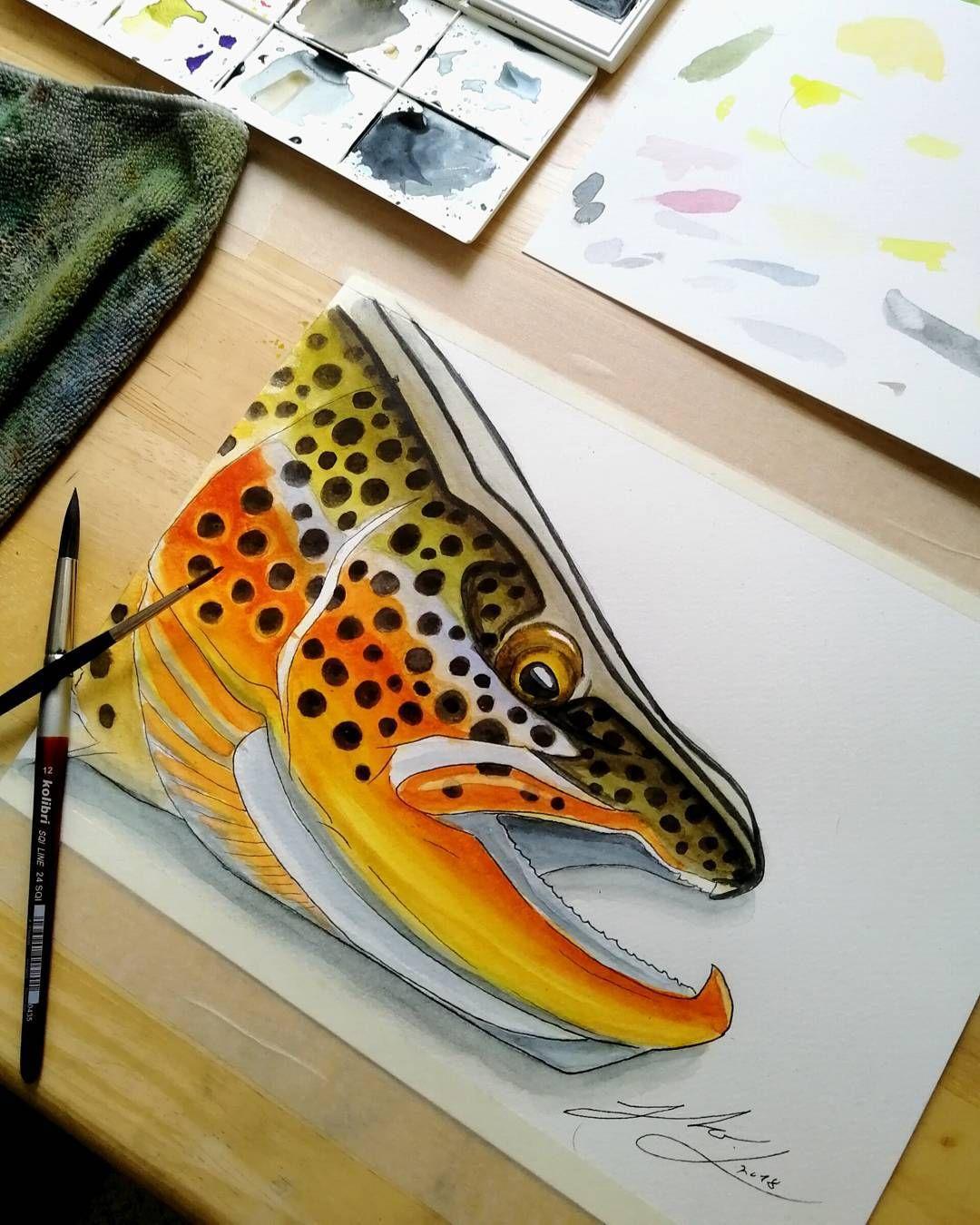 trout fish fishing drawing brown head fly instagram artwork drawings simple paintings watercolor watercolour club