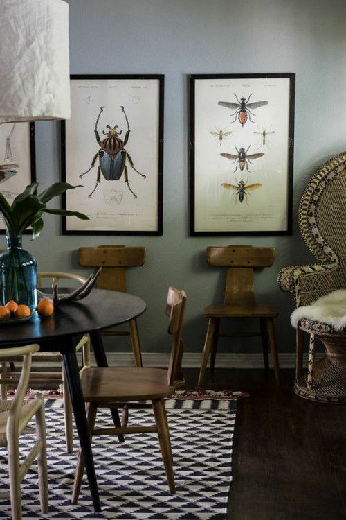 Enlarged Vintage Insect Prints Make Such Cool Art Bug ArtEclectic Dining RoomsGrey