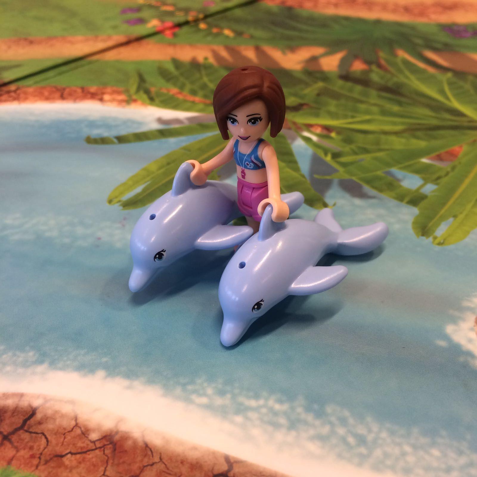 fotosessie: met de dolfijnen zwemmen