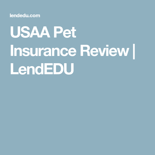 Usaa Pet Insurance Review For 2020 Pet Insurance Reviews Pet Insurance Pet Health Insurance